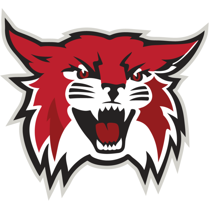 Willow Grove Wildcat logo
