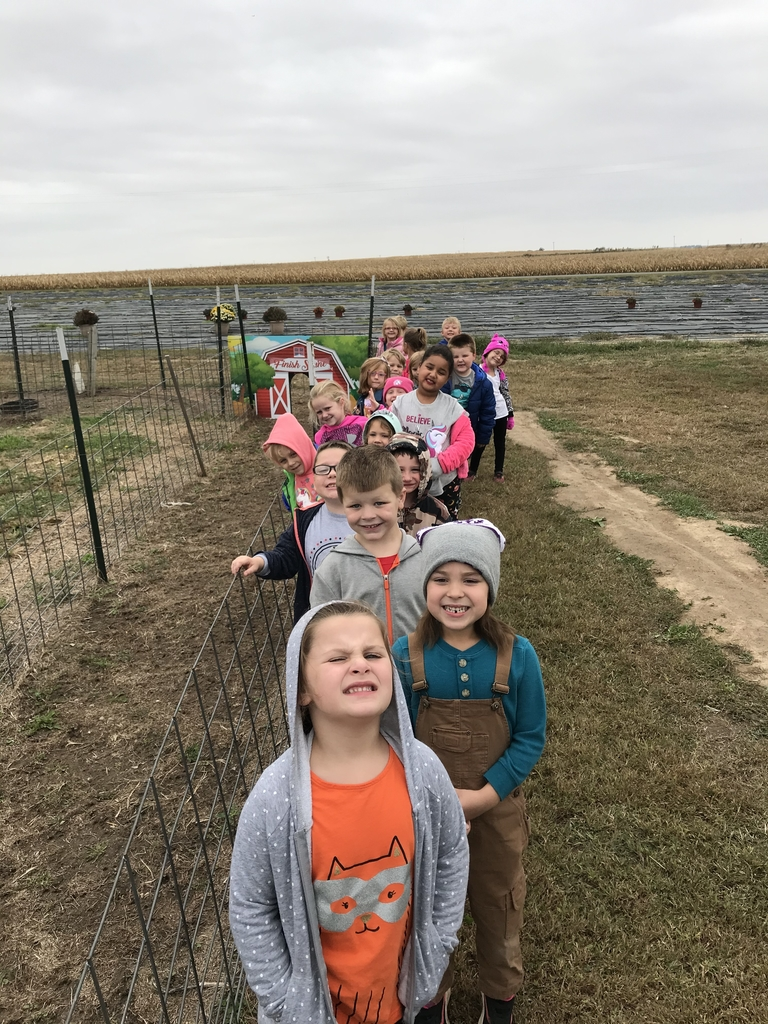Kindergarten had a great time at the pumpkin patch today!