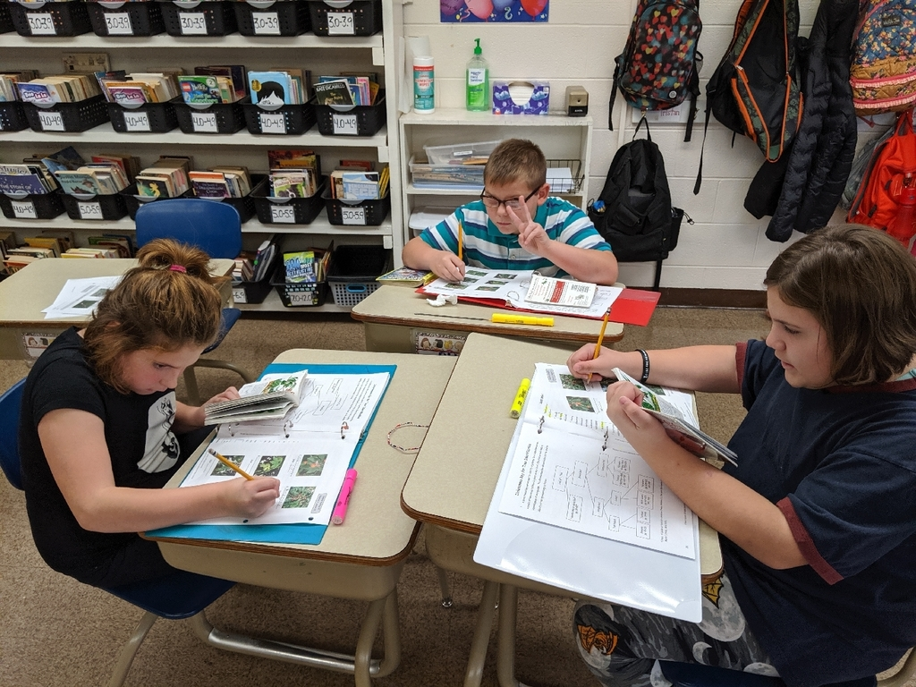 4th grade is working to identify various leaves with a dichotomous key and our Trees booklets.